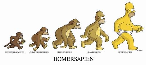 Simp_MonkeySuit