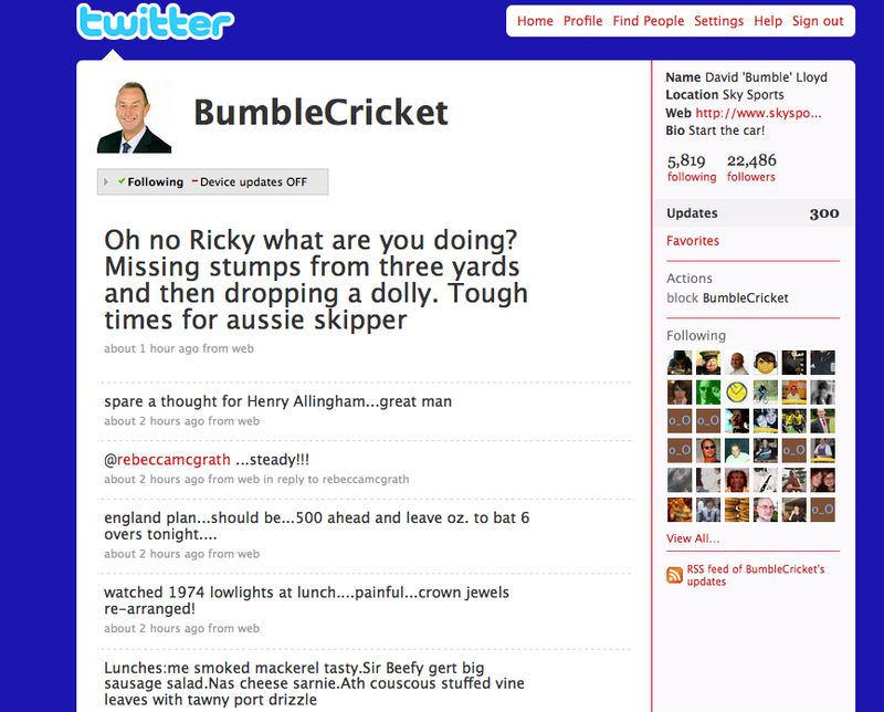 Bumblecricket